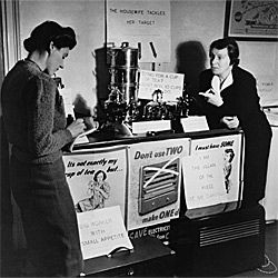 Caroline Haslett was a pioneering 20th-century British engineer who was intrigued with electricity and how it might better liberate female homemakers.