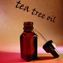 The benefits of tea tree oil are overwhelming.