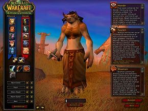 """A female """"World of Warcraft"""" character in the making -- but is her player male or female?"""