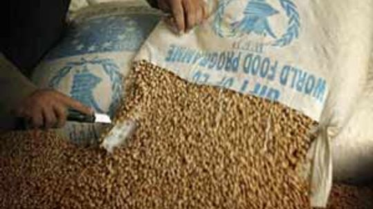 How World Hunger Organizations Work