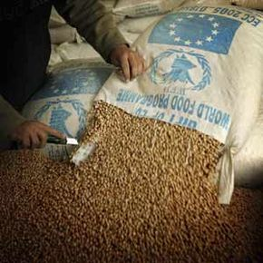 World hunger is a global issue and it will take a global effort to find the solution. With the help of world hunger organizations, one day that solution could be within reach.