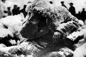 Man frozen to death