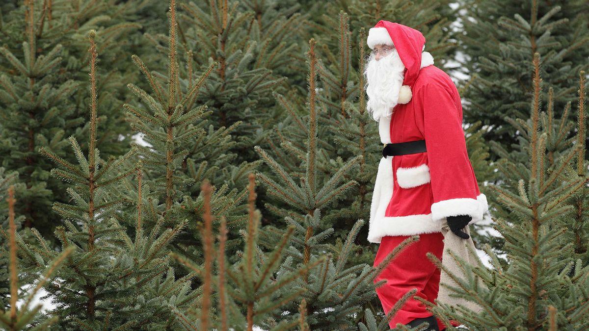 Christmas Activities 2021 Near Fraser Mi Esbxjuhk1qlvbm