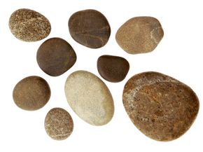 Stones found at the beach that have been worn smooth by the waves are ideal pet-rock candidates.