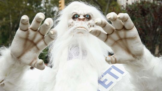 Are the Yeti Just a Bunch of Bears? Genetics Says 'Yes'