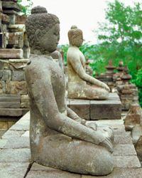 Statues of Buddha are often found in zen gardens.