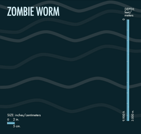 It make look Seussian, but the zombie worm can break down massive creatures with the acid it secretes.