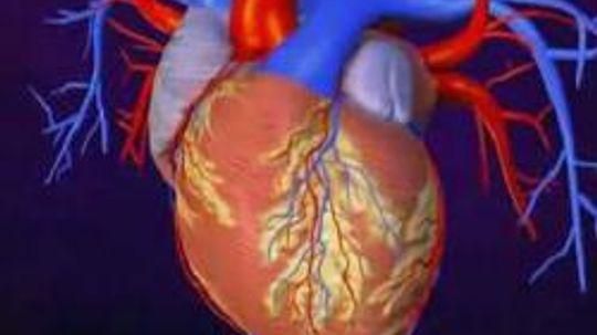 Congestive Heart Failure 101