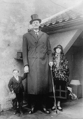 human height, tall, short