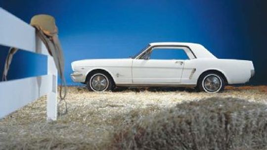 1965 1966 Ford Mustang