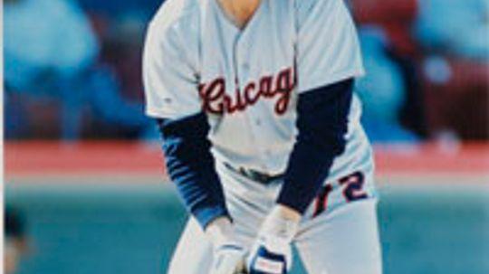 1985 Baseball Season