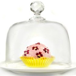 After you put the final touches on your cake, keep it fresh and safe under a cake dome.