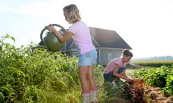 If you have time to invest in a family garden, you'll reap the rewards (and it'll give you a good excuse to spend quality family time together).