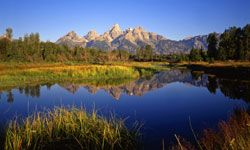 The Grand Tetons are an amazing sight on their own -- throw in beautiful lakes and amazing animals, and your trip is complete.