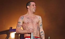 Steve-O swears all these tats will make you laugh.