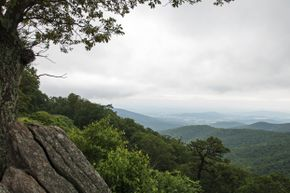 Here's one view you might take in on a drive through Virginia.