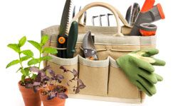 This is the perfect gift for the bride with a green thumb.