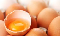 The Paleolithic Diet could be worth a try if you love eggs and other foods that can be hunted, fished or gathered.