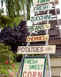 When shopping at the farmer's market, develop your menu from whatever ingredients look and smell the freshest.