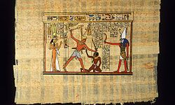A sample of Egyptian papyrus paper