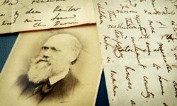 Charles and Emma Darwin lost three children during their marriage.