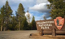 We think every family should visit Yellowstone.