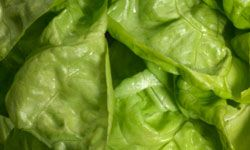 Lettuce makes for a healthy wrap for your chicken and veggie concoction.