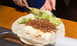 When you're craving a burrito, you've got a hankering for a stuffed tortilla -- not a little donkey.