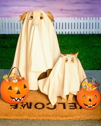 We wouldn't mind being haunted by ghosts as cute as these.