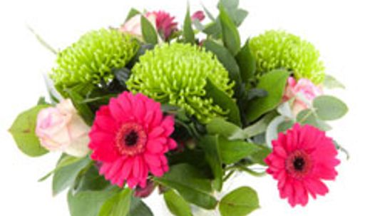 10 Flowers With Secret Meanings