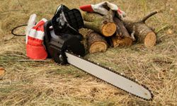 If you choose the right kind, even a chain saw can be friendly to the environment. See more pictures of power tools.