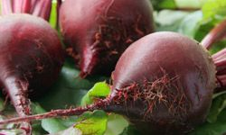 Take a break from heavy holiday desserts by grilling these naturally sweet beets.