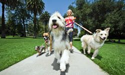 Taking extra time to walk the dog or use the stairs can add up.