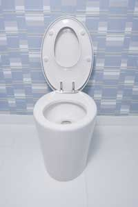 Think of the time and energy you'd save not having toopen andclose your own toilet lid.