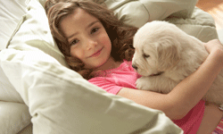 Children should be taught to treat the family pet with care.