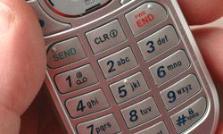 Have emergency phone numbers ready.