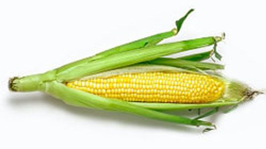 10 Low-budget Uses for Corn