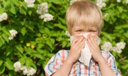 Allergies can be a real nuisance. Get health tips with staying healthy pictures.