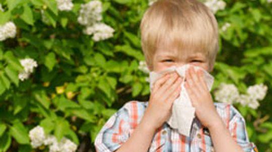 Allergy-Asthma Connection