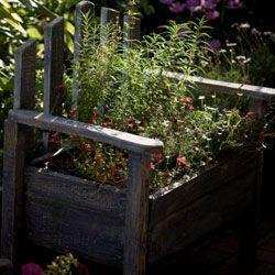 It's easy to convert an old garden bench into an actual part of your garden.