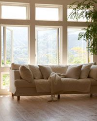 Open or remove your blinds and shutters to let as much light as possible into your home.
