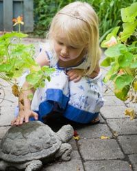 Flagstone can be a variety of different stones, but it's usually thin and built for walking purposes.