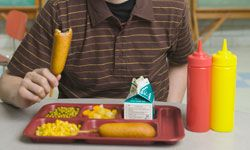 School lunch corn dogs are going the way of the dinosaur. See what you should be packing in these lunch box pictures.