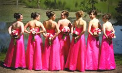 It's no good when bridesmaids turn against you.