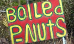 If you're a boiled peanut fan, you'll pull over when you see this sign.