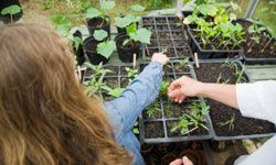 Your kids will enjoy being outside and watching their plants grow.