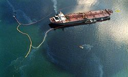 The ship called the Exxon Valdez spilled hunderds of thousands of gallons of oil in Alaskan waters