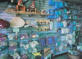 When aquascaping your aquarium, keep in mind the look you want to achieve as well as the needs of each fish.