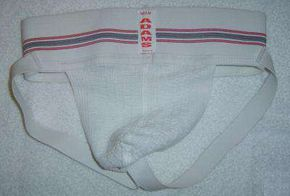 It is illegal to use briefs like these to clean your car in San Francisco.