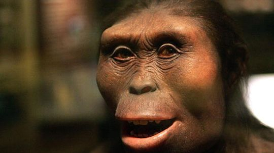 How are humans different from our ancestors?